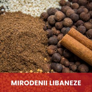 Libaneze